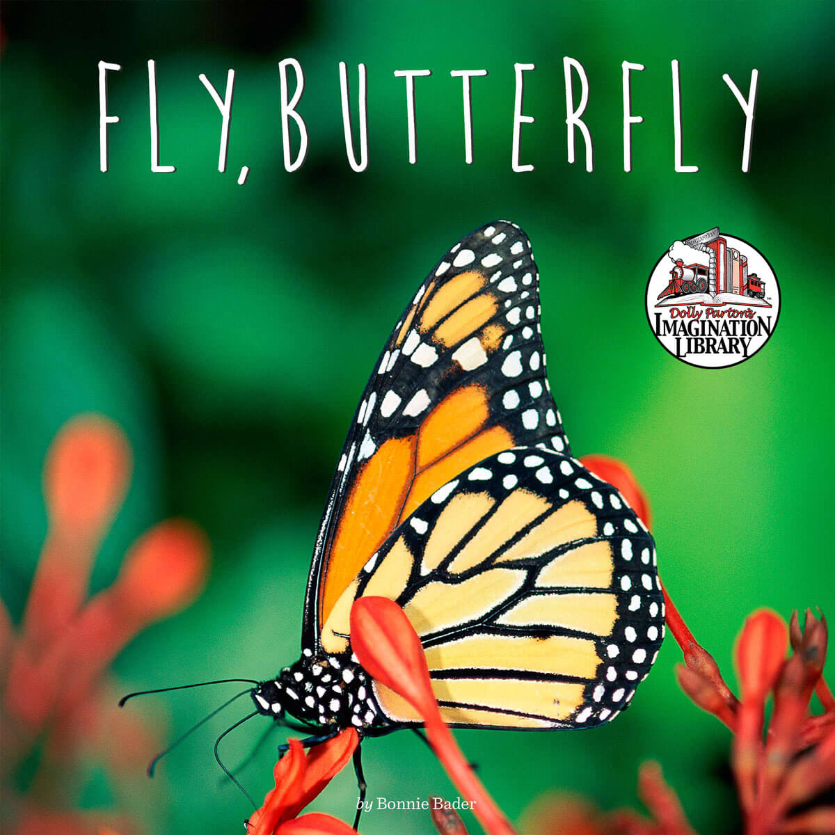 Fly Butterfly - Dolly Parton's Imagination Library